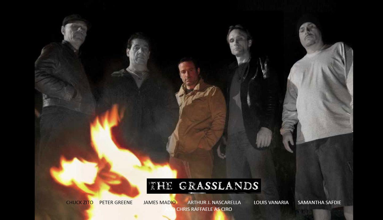 1-the-grasslands